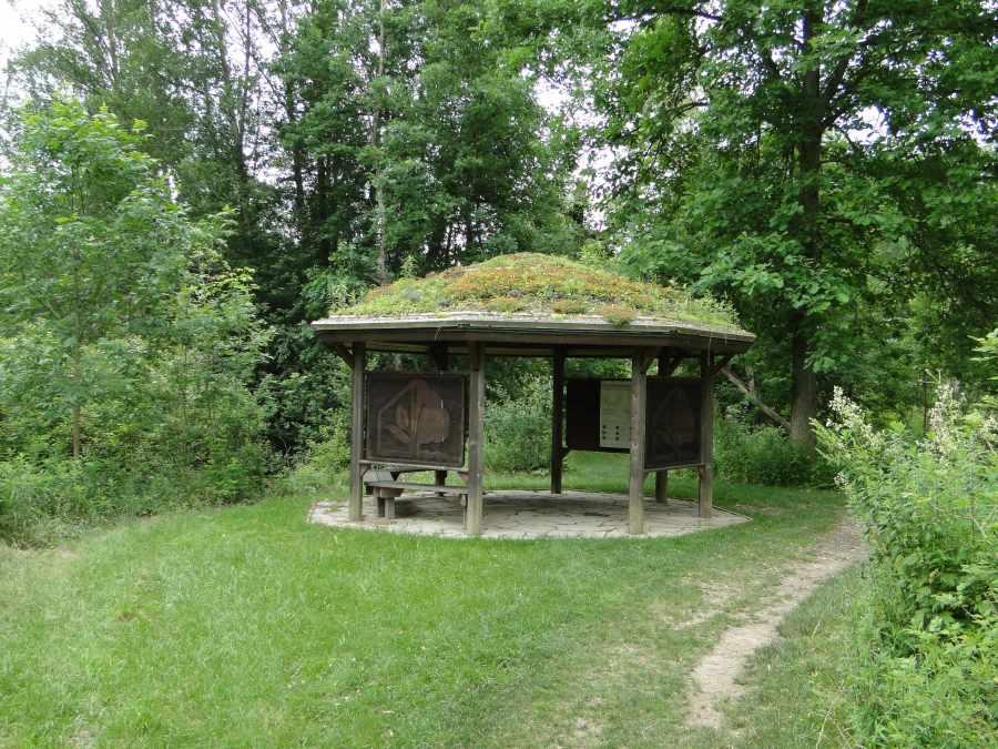 Green roof gazebo-Matthaei