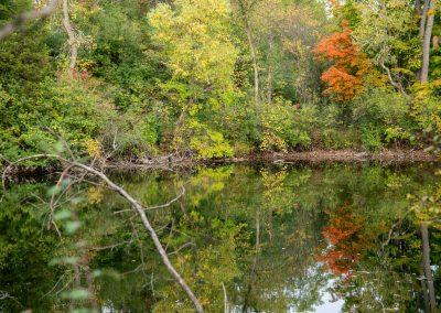 Fall colors at Matthaei.-(Photo by John Metzler.)