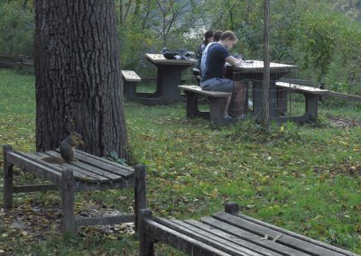 Students studying near the riverfront in Nichols Arboretum. (Photo by Michele Yanga.)