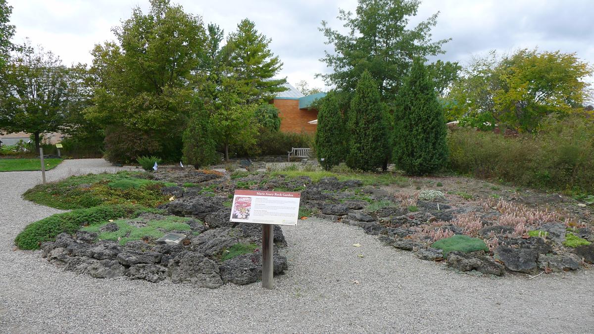 Rock Garden before-October 18