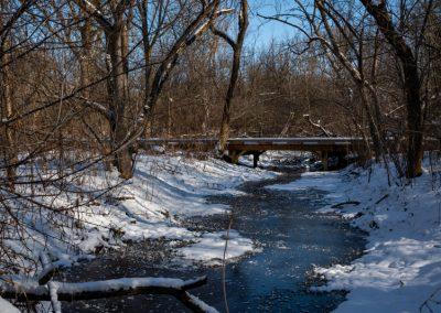 Fleming Creek at Matthaei