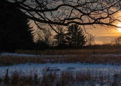 Sunrise at Matthaei