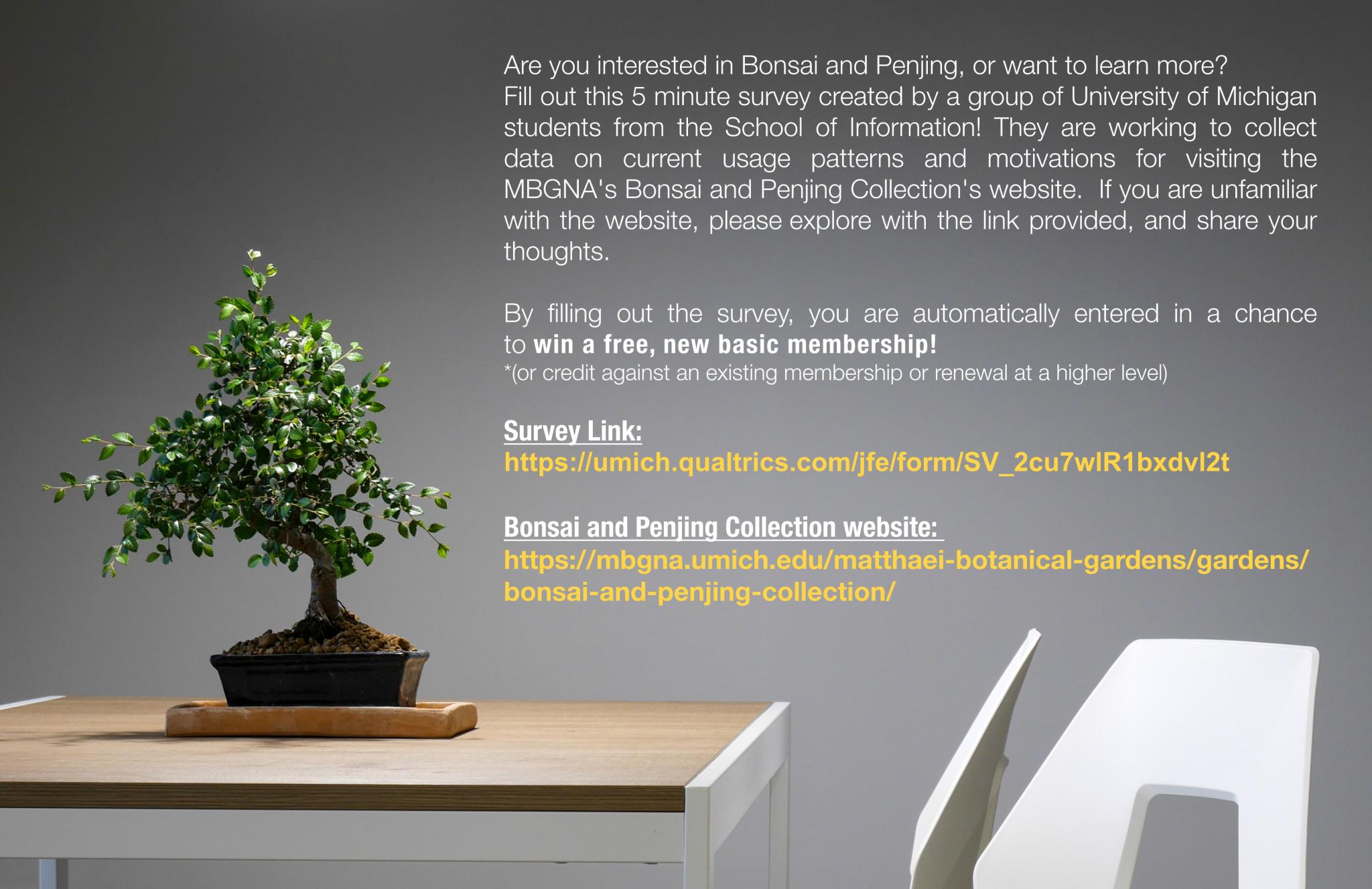 Take our bonsai survey