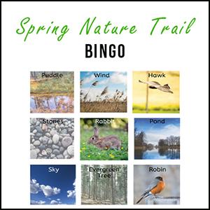 Nature trails bingo