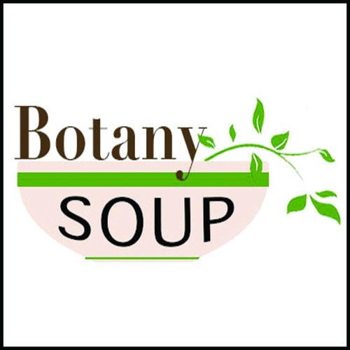 Botany Soup activity sheet