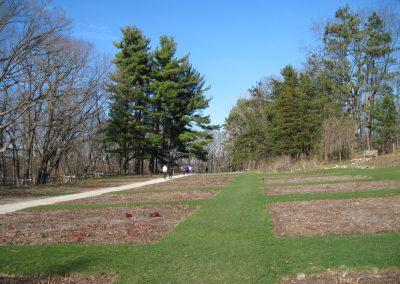 Nichols Arboretum Peony Garden. Photo by Bob Grese.