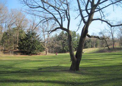 Main valley, Nichols Arboretum. Photo by Bob Grese.