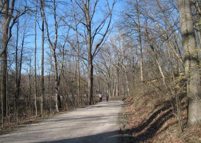 Nichols Arboretum path. Photo by Bob Grese.