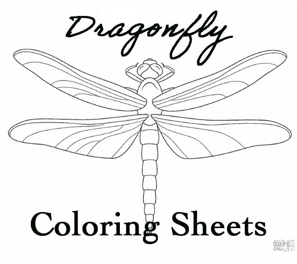 Dragonfly coloring sheets