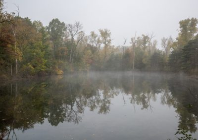 Misty fall morning at Dix Pond, Matthaei Botanical Gardens