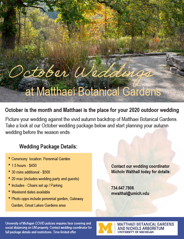 Special offer for October weddings