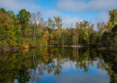 Sunny Dix Pond