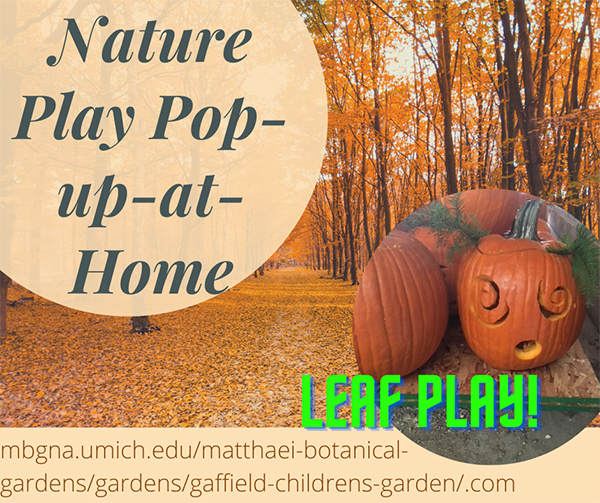 Nature play popup activity for October 11 2020