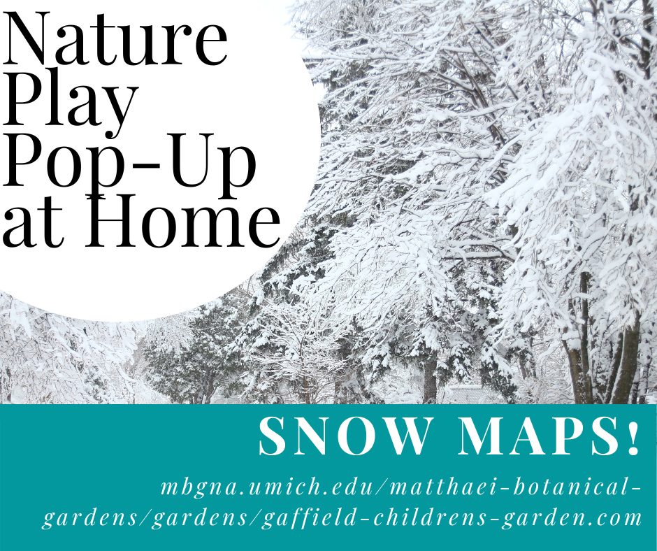 Nature play pop up banner for December 6 2020