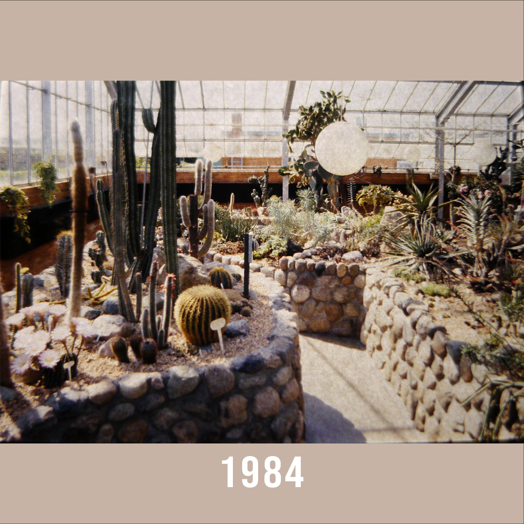 Matthaei conservatory arid house 1984